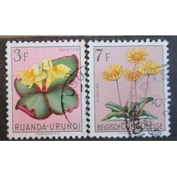 Belgie známky 2460