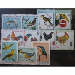 Fauna ptáci 112_006